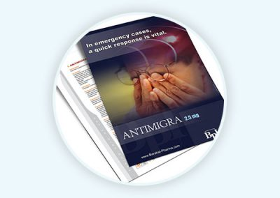 Antimigra Flyer Design