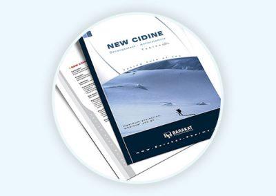 New Cidine Flyer Design